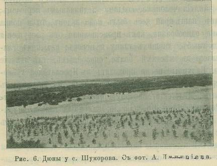 Дюны у с.Шуморова
