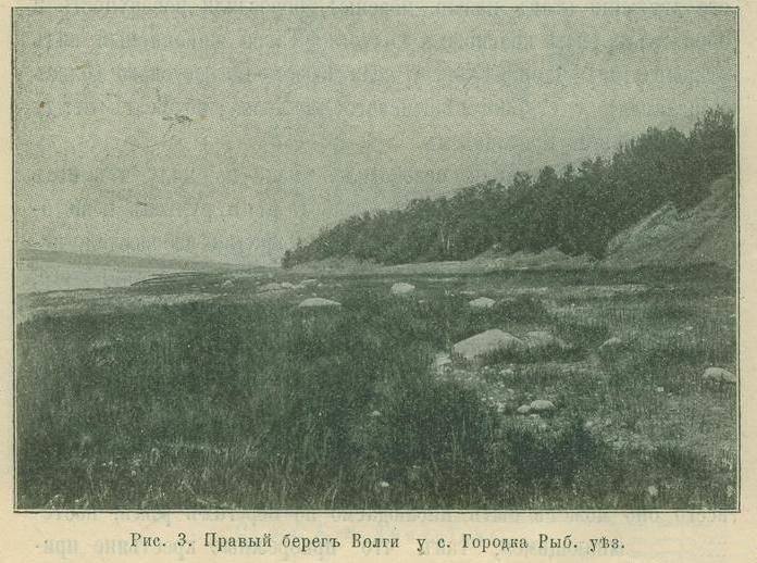 Правый берег Волги у с. Городка Рыб.уез.